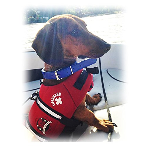 Paws Aboard Red Neoprene Life Jacket, Dog or Cat Life Preserver (Small 15-20 Lbs)