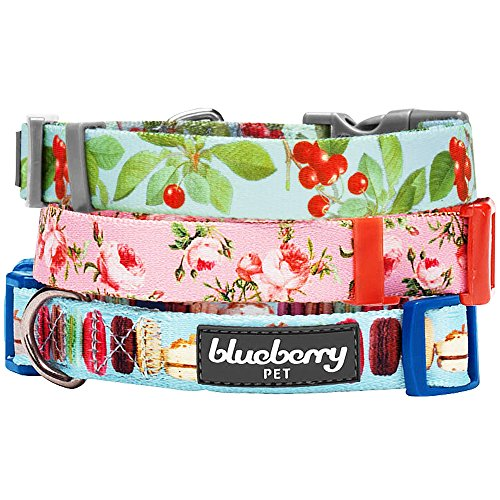 Blueberry Pet 3/8-Inch Spring Scent Inspired Floral Rose Basic Polyester Nylon Dog Collar for Puppy, X-Small, Baby Pink