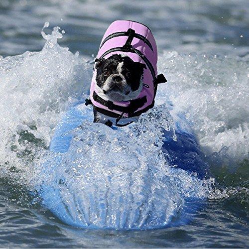 Pet Lifte Preserver – All Sizes – Dog Life Vest Jacket Doggy Life Jacket Violet Medium