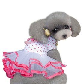 HP95(TM) Fashion Puppy Dog Princess Dress Dog Cherry Lace Skirt Pet Dog Tutu Dress (XS)