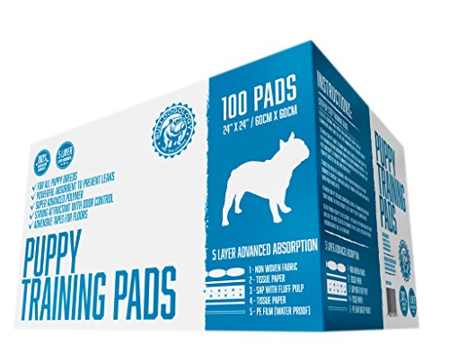 Bulldogology Premium Puppy Training Pads – Quilted 5 Layers with Super Absorbent Polymer – No-slip Sticky Tape Under Pads – Attractant and Odor Neutralizer – Made For All Types of Dogs – 100 Bulk Count – 24″ X 24″ – Free Guide to Train Your Pup – 100% Satisfaction Guaranteed