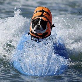 Pet Dog Doggy Life Jacket Puppy Life Preserver Lab Swimwear with Belt