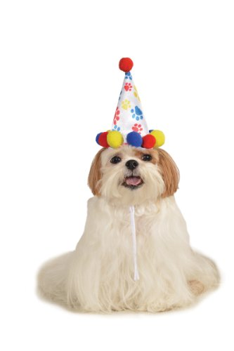 Rubies Costume Halloween Classics Collection Pet Costume, Small to Medium, Boy Paw Print Birthday Hat