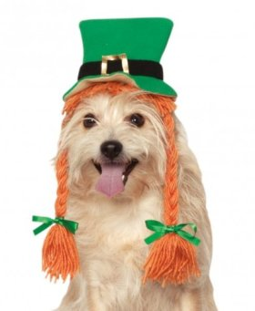Rubies Costume Company St. Patty's Day Girl Pet Hat with Braids, Small/Medium