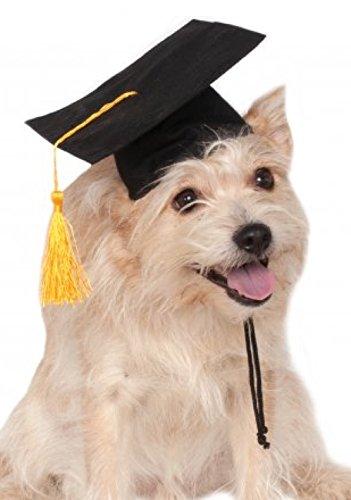 Rubies Costume Black Graduation Hat Pet Accessory, Medium/Large