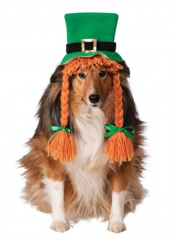 Rubies Costume Company St. Patty's Day Girl Pet Hat with Braids, Medium/Large