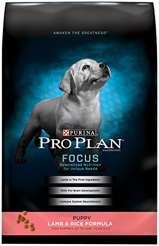 Purina Pro Plan Dry Dog Food, Focus, Puppy Lamb & Rice Formula, 34-Pound Bag, Pack of 1