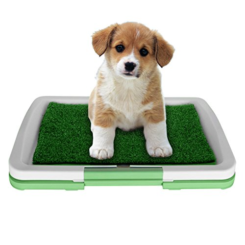 Synturfmats Puppy Potty Trainer, Indoor Pet Restroom/Training Pads for Doggy