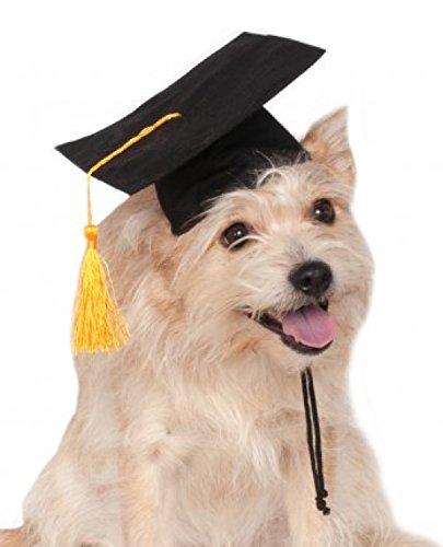 Rubies Costume Black Graduation Hat Pet Accessory, Small/Medium