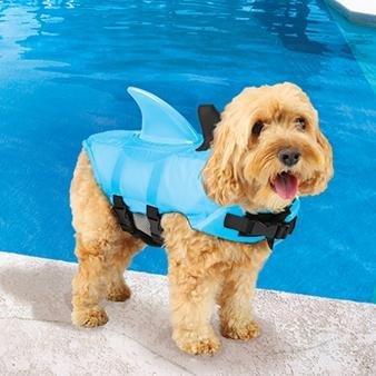 Swimways Sea Squirts Doggie Jacket, Blue (Small)