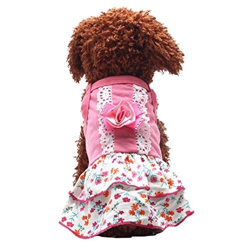 Binmer(TM)Pet Dog Clothes Puppy Flower Skirts Dress Crystal Bowknot Lace Floral Pet Princess Clothes (S)