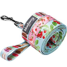Blueberry Pet 3/8-inch by 6-Feet Spring Scent Inspired Floral Rose Baby Pink Nylon Dog Leash for Puppy, X-Small