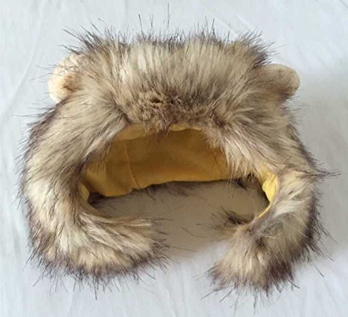 Fenarzo Soft Comfy Velveteen Hat for Small Dogs and Cats (Lion)