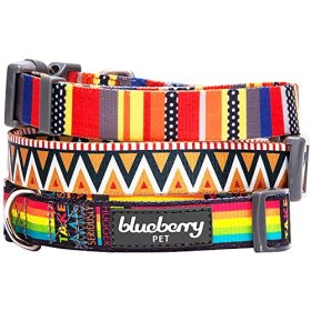 Blueberry Pet 3/8-Inch Summer Nautical Flags Inspired Designer Basic Polyester Nylon Dog Collar for Puppy, X-Small