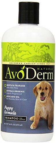 AvoDerm Natural Puppy Formula Shampoo