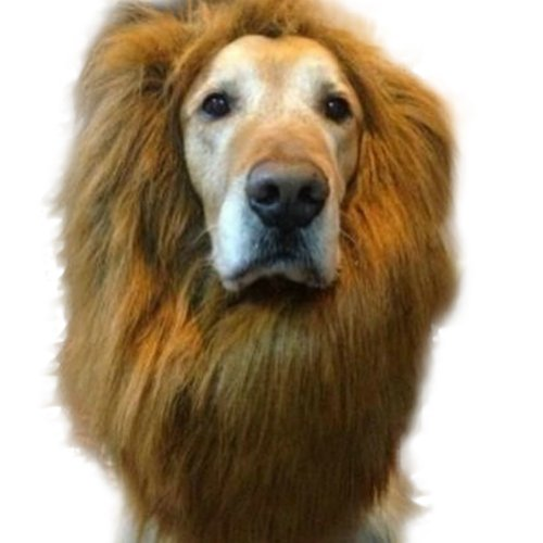 Comemall Lion Mane Wig Halloween Pet Costume Cat Fancy Dress up Clothes for Large Dogs (Light Brown)