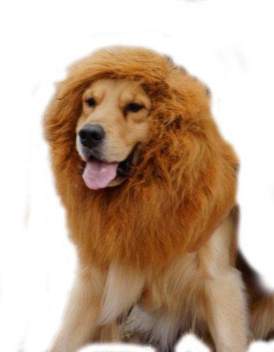 EconoLed Large Pet Dog Cat Lion Wigs Mane Hair Festival Party Fancy Dress Clothes Costume(Brown, L)