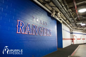 Rangers Stadium Tour Proposal
