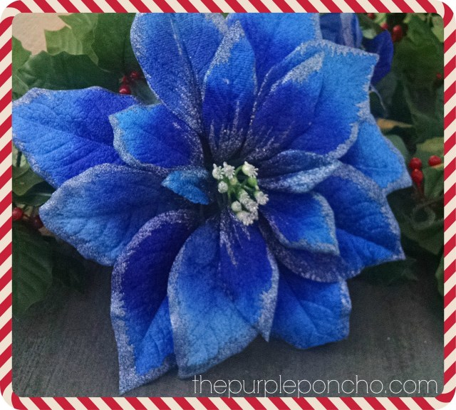 Blue Poinsettia by The Purple Poncho