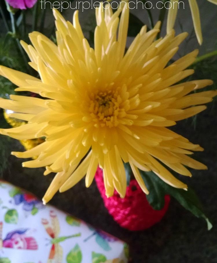 Yellow Mum by The Purple Poncho