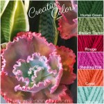 Creative Colors – Succulent Palette!