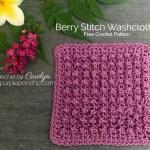 Berry Stitch Washcloth – Free Crochet Pattern