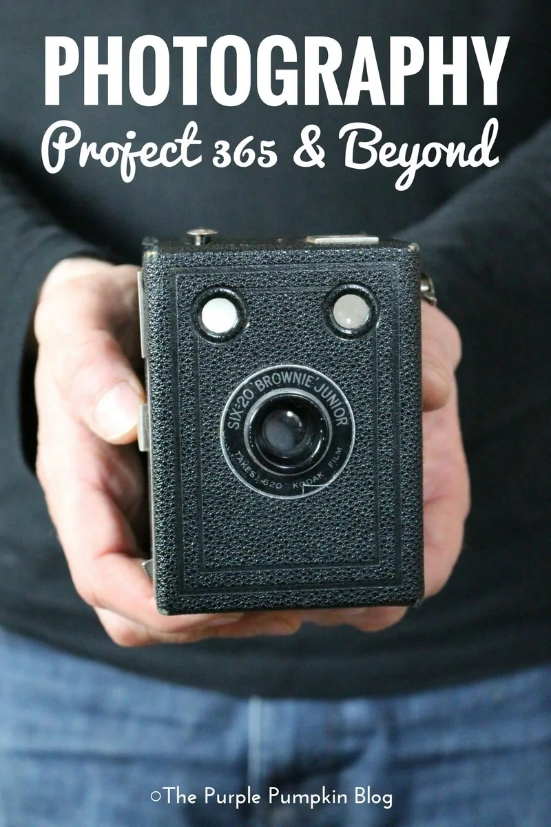 Photography: Project 365 & Beyond. 5+ years of Project 365 including photo ideas and tips. PLUS lots of inspiring photos for beginners and novices. Including wildlife, nature, events, and Disney photography!
