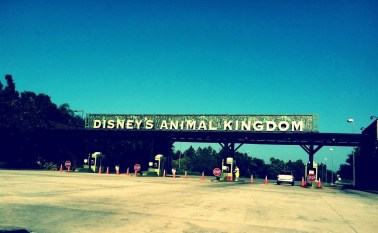 animal-kingdom-sign3