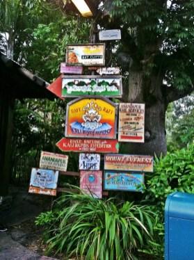 animal-kingdom-signs