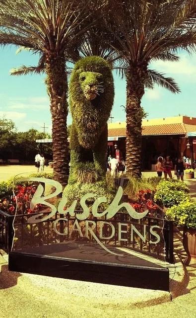 busch-gardens