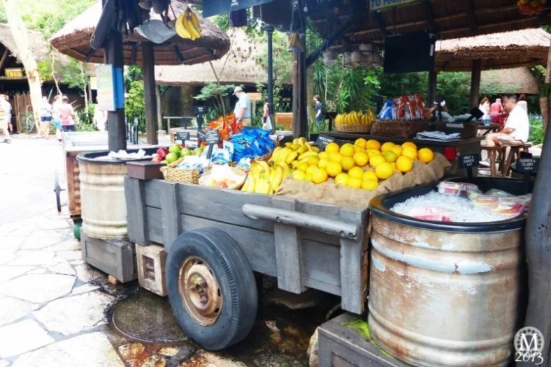 Fruit Cart at Animal Kingdom