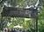 harambe-sig2