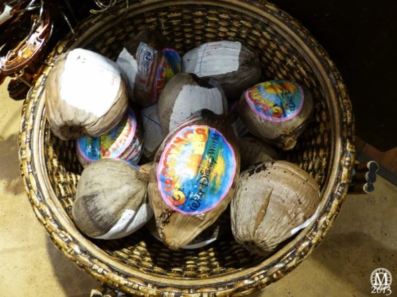 send-a-coconut-postcard-from-polynesian-resort-disney