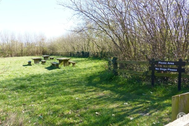 the-chase-nature-reserve-dagenham-essex1