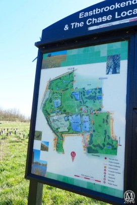 the-chase-nature-reserve-dagenham-essex3