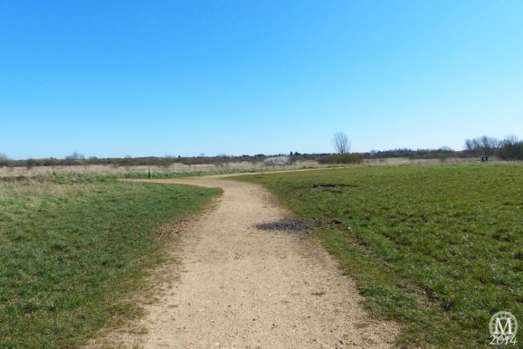 the-chase-nature-reserve-dagenham-essex6