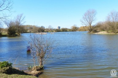 the-chase-nature-reserve-dagenham-essex63