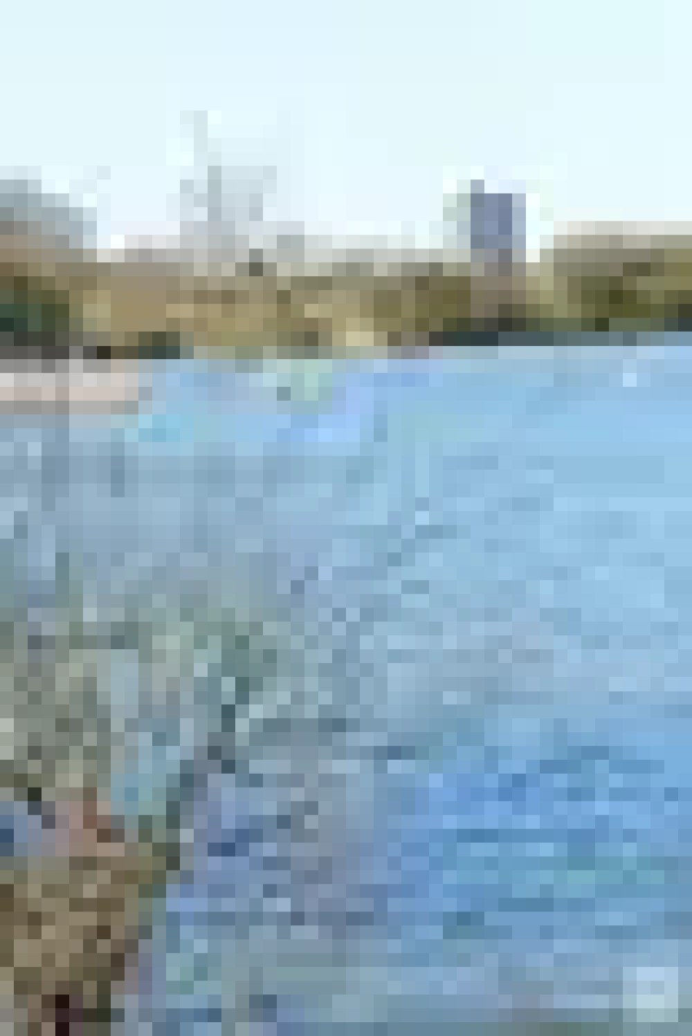 the-chase-nature-reserve-dagenham-essex64