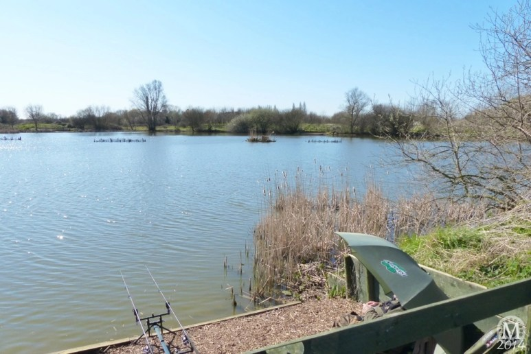 the-chase-nature-reserve-dagenham-essex8