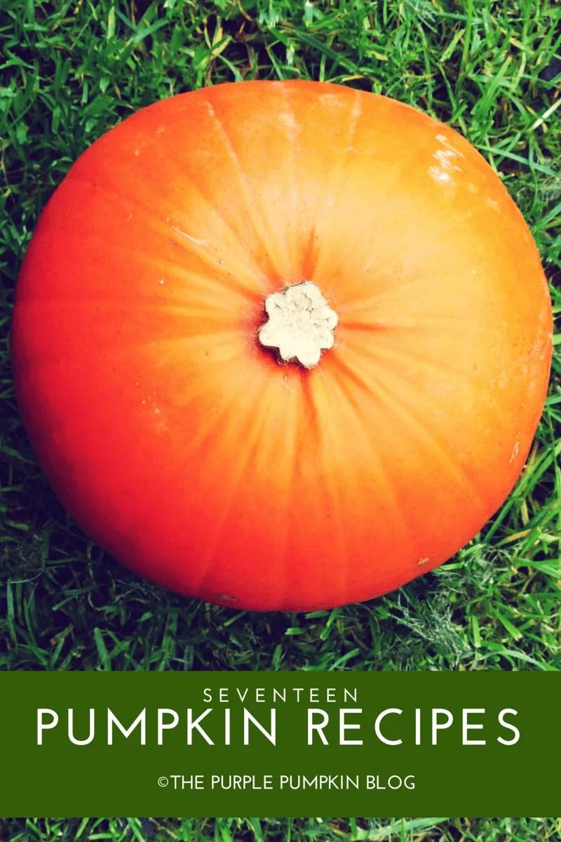 17 Pumpkin Recipes