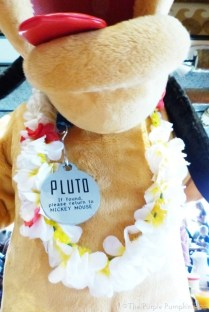 Pluto at 'Ohana Character Breakfast