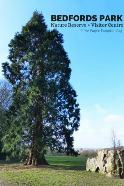 Bedfords Park Nature Reserve + Visitor Centre Romford Havering