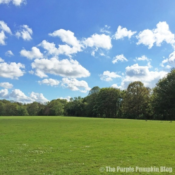 Bedfords Park Noak Hill Romford Essex