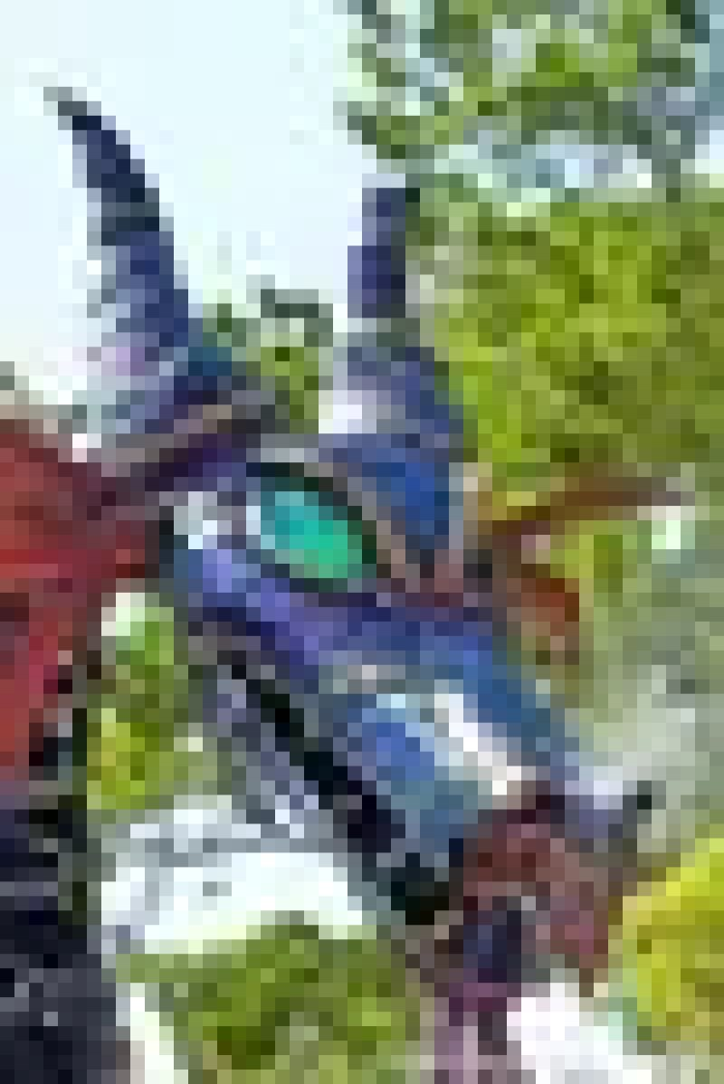 Maleficent Dragon - Festival of Fantasy Parade at Disney's Magic Kingdom