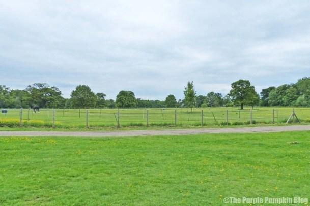 Hylands Park