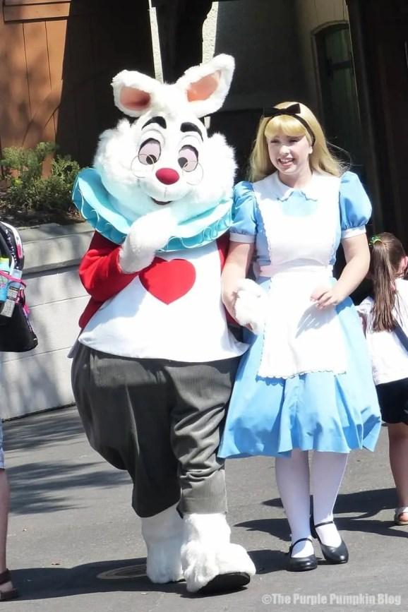 The White Rabbit and Alice at Magic Kingdom