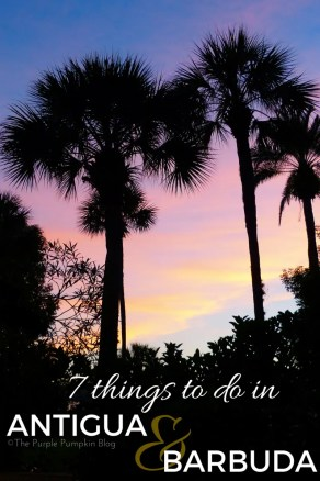 7 Things To Do in Antigua & Barbuda