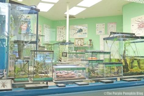 Conservation Station at Disney's Animal Kingdom