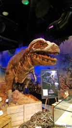 Incredible Nature at Ripley's Believe It or Not! London