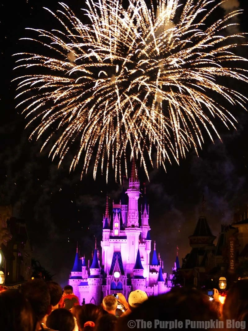 Magic Kingdom - Wishes Fireworks